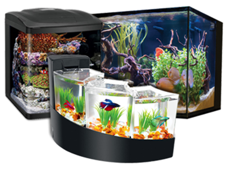 Picture for category Aquariums & Kits